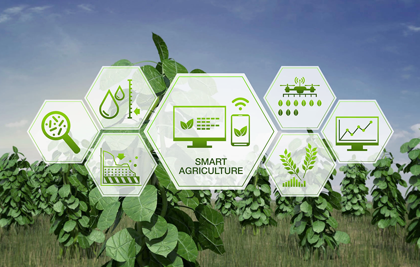 ICTs and Social Media for Agricultural Advisory Services